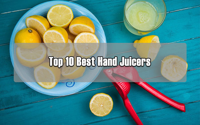 Squeezer Oranges with Filter and Container Portable Hand Juicer ...